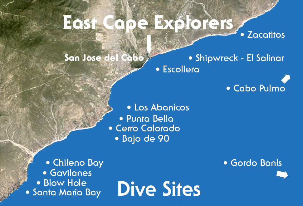 dive sites in san jose del cabo